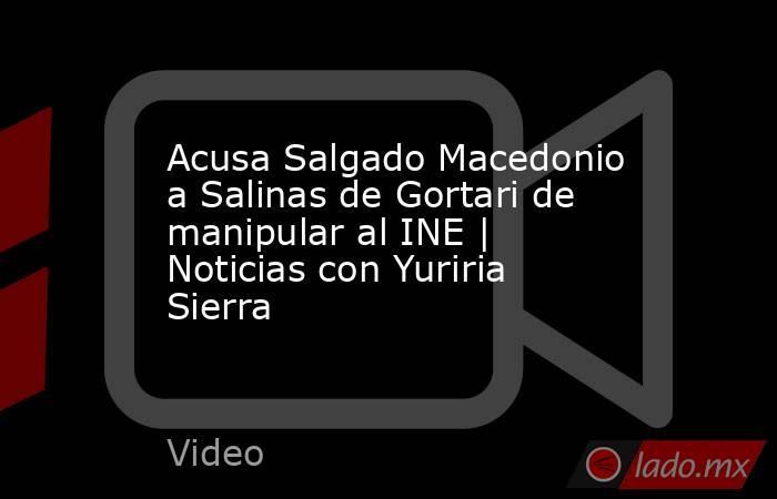 Acusa Salgado Macedonio a Salinas de Gortari de manipular al INE   Noticias con Yuriria Sierra. Noticias en tiempo real
