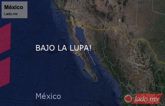 BAJO LA LUPA!. Noticias en tiempo real