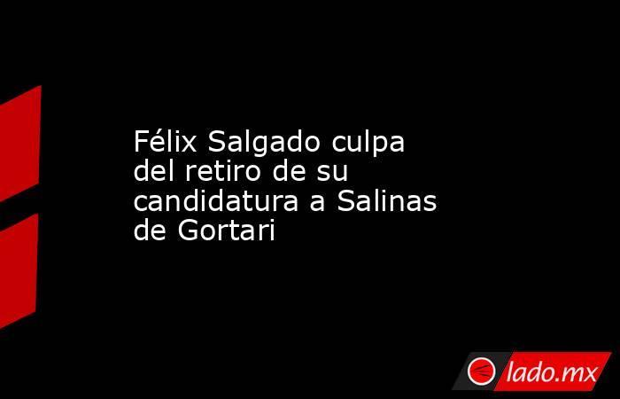 Félix Salgado culpa del retiro de su candidatura a Salinas de Gortari . Noticias en tiempo real