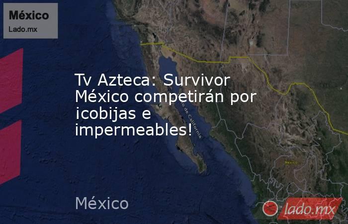 Tv Azteca: Survivor México competirán por ¡cobijas e impermeables! . Noticias en tiempo real