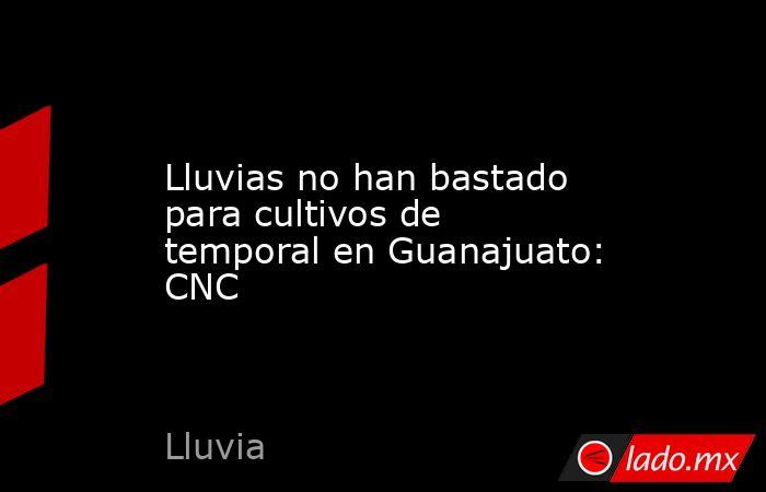 Lluvias no han bastado para cultivos de temporal en Guanajuato: CNC. Noticias en tiempo real
