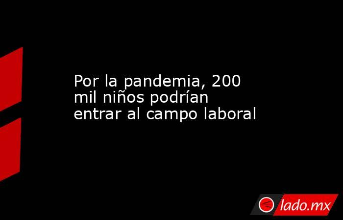 Por la pandemia, 200 mil niños podrían entrar al campo laboral. Noticias en tiempo real