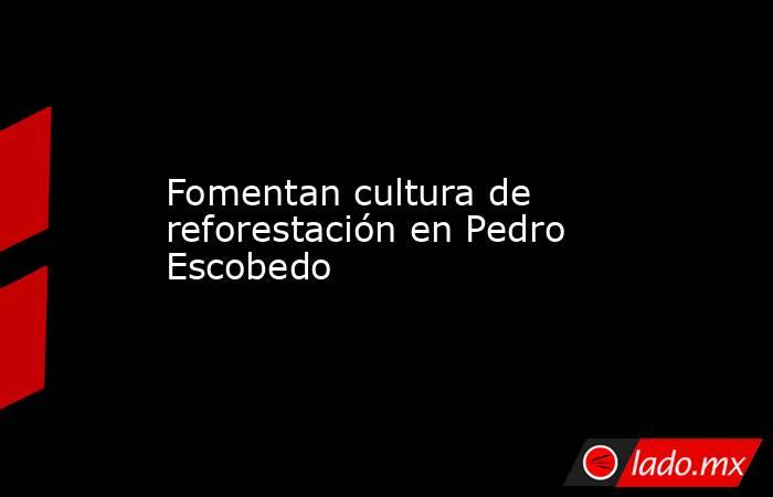 Fomentan cultura de reforestación en Pedro Escobedo. Noticias en tiempo real