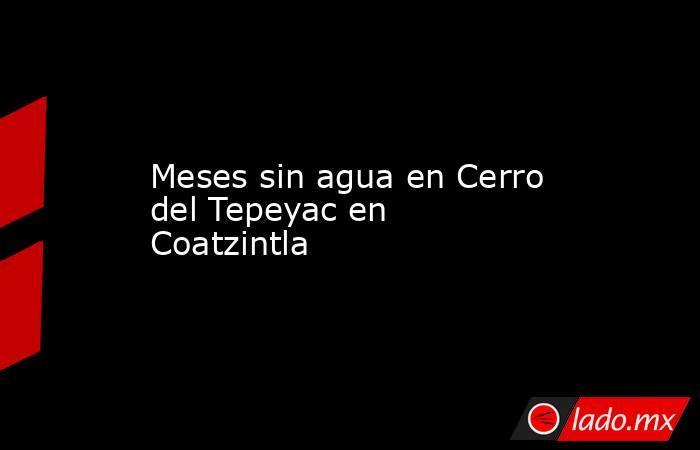 Meses sin agua en Cerro del Tepeyac en Coatzintla. Noticias en tiempo real