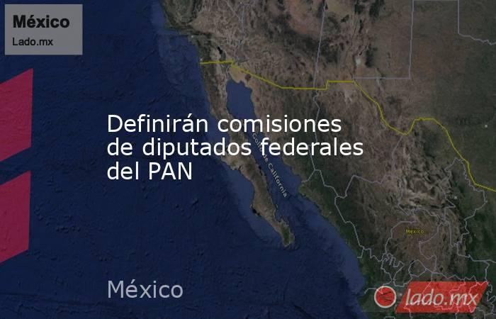 Definirán comisiones de diputados federales del PAN. Noticias en tiempo real