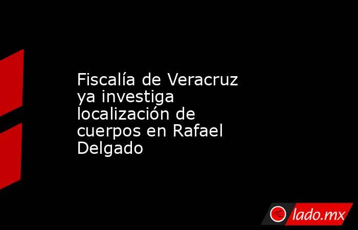 Fiscalía de Veracruz ya investiga localización de cuerpos en Rafael Delgado. Noticias en tiempo real
