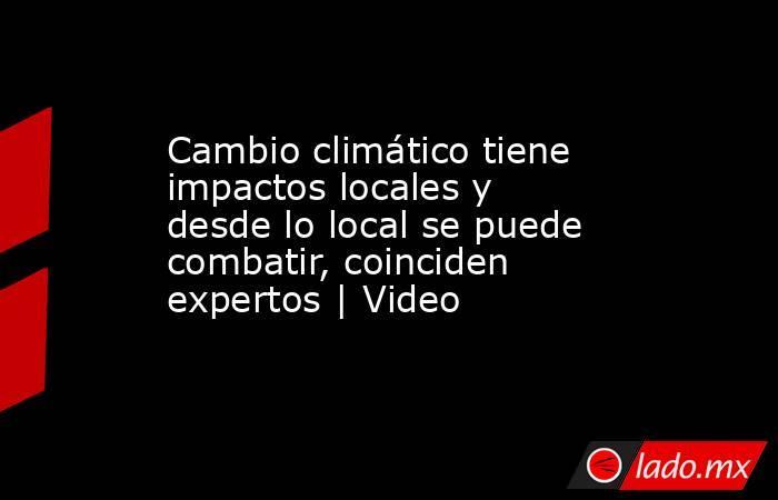 Cambio climático tiene impactos locales y desde lo local se puede combatir, coinciden expertos | Video. Noticias en tiempo real