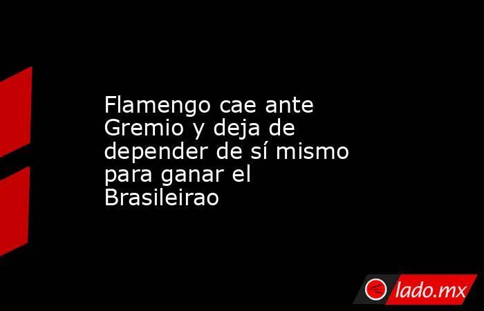 Flamengo cae ante Gremio y deja de depender de sí mismo para ganar el Brasileirao. Noticias en tiempo real