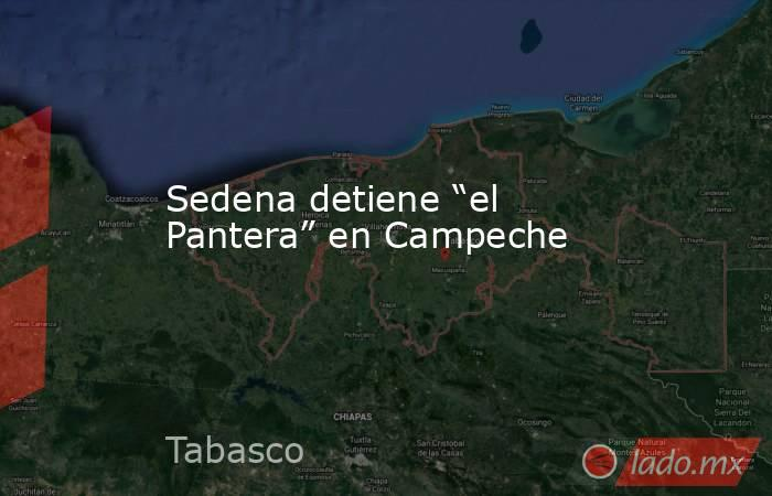 """Sedena detiene """"el Pantera"""" en Campeche. Noticias en tiempo real"""
