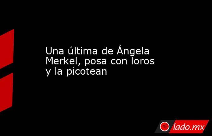 Una última de Ángela Merkel, posa con loros y la picotean . Noticias en tiempo real