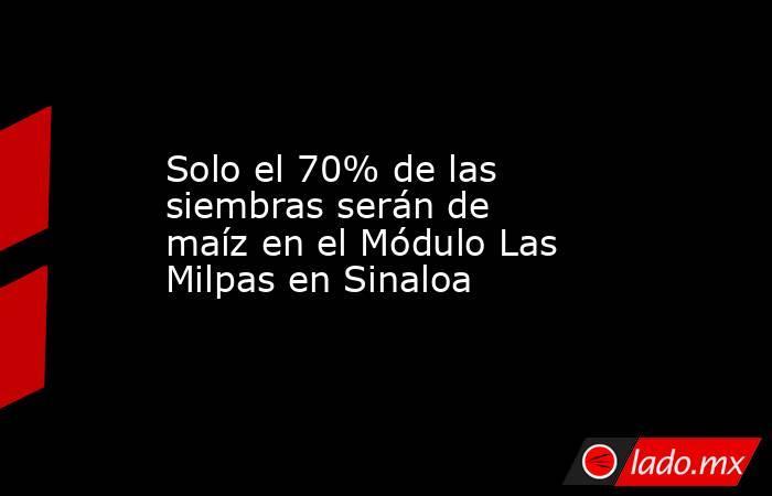 Solo el 70% de las siembras serán de maíz en el Módulo Las Milpas en Sinaloa. Noticias en tiempo real