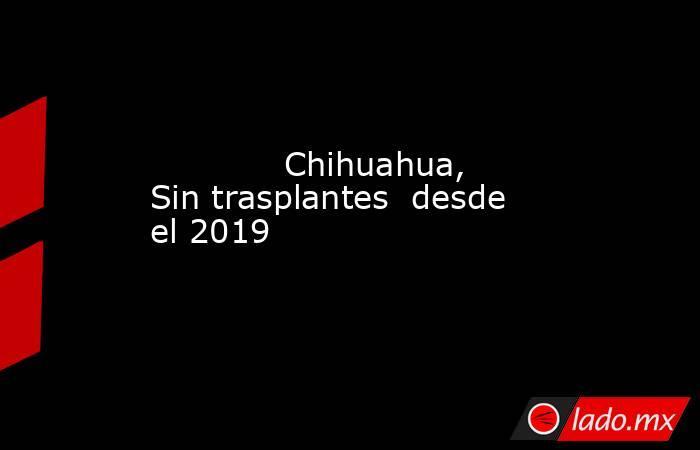 Chihuahua, Sin trasplantes  desde el 2019            . Noticias en tiempo real