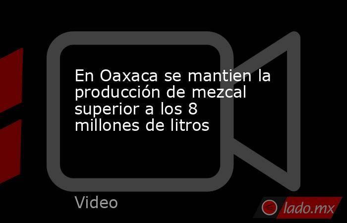 En Oaxaca se mantien la producción de mezcal superior a los 8 millones de litros. Noticias en tiempo real