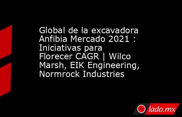 Global de la excavadora Anfibia Mercado 2021 : Iniciativas para Florecer CAGR | Wilco Marsh, EIK Engineering, Normrock Industries. Noticias en tiempo real