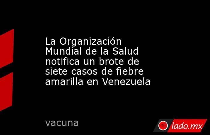 La Organización Mundial de la Salud notifica un brote de siete casos de fiebre amarilla en Venezuela. Noticias en tiempo real