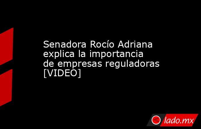 Senadora Rocío Adriana explica la importancia de empresas reguladoras [VIDEO]. Noticias en tiempo real