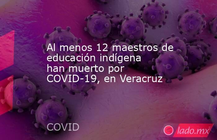Al menos 12 maestros de educación indígena han muerto por COVID-19, en Veracruz. Noticias en tiempo real