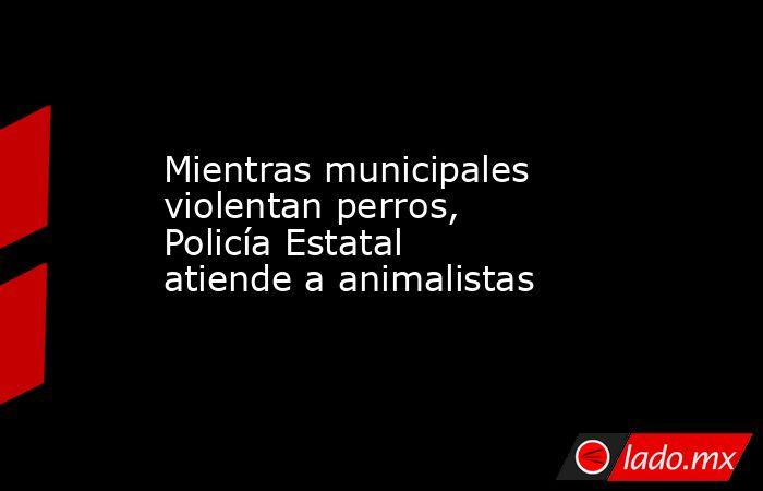 Mientras municipales violentan perros, Policía Estatal atiende a animalistas. Noticias en tiempo real