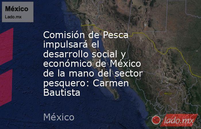 Comisión de Pesca impulsará el desarrollo social y económico de México de la mano del sector pesquero: Carmen Bautista. Noticias en tiempo real
