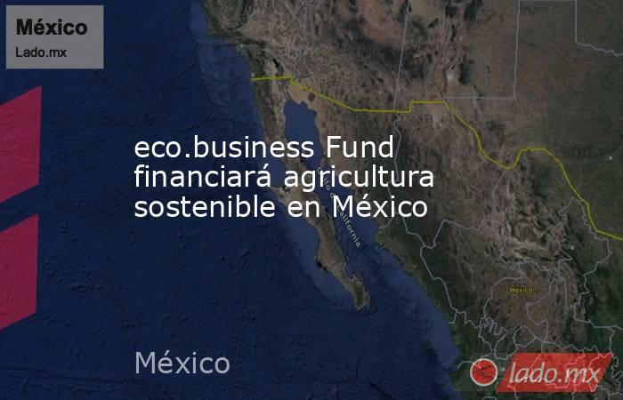 eco.business Fund financiará agricultura sostenible en México. Noticias en tiempo real