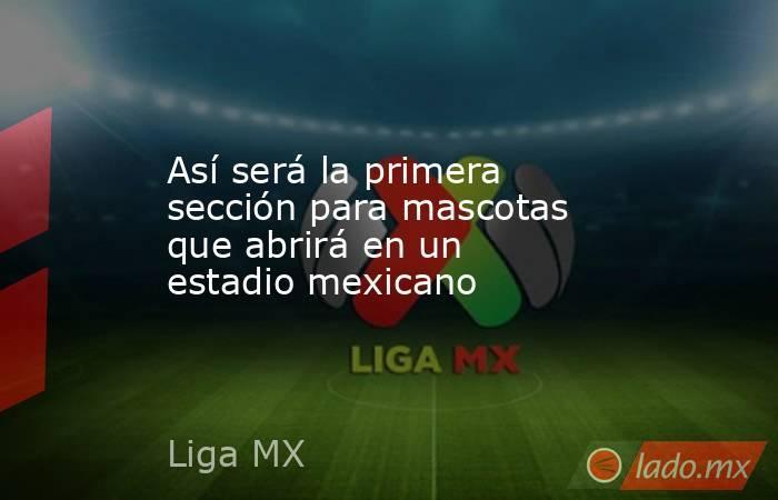 Así será la primera sección para mascotas que abrirá en un estadio mexicano. Noticias en tiempo real