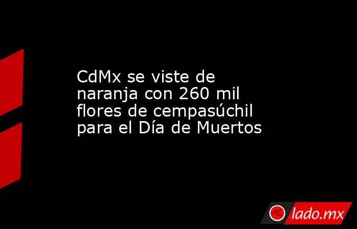 CdMx se viste de naranja con 260 mil flores de cempasúchil para el Día de Muertos. Noticias en tiempo real