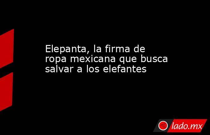 Elepanta, la firma de ropa mexicana que busca salvar a los elefantes. Noticias en tiempo real