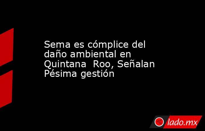 Sema es cómplice del daño ambiental en Quintana  Roo, Señalan Pésima gestión. Noticias en tiempo real