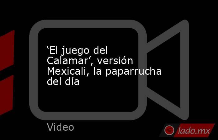 'El juego del Calamar', versión Mexicali, la paparrucha del día. Noticias en tiempo real