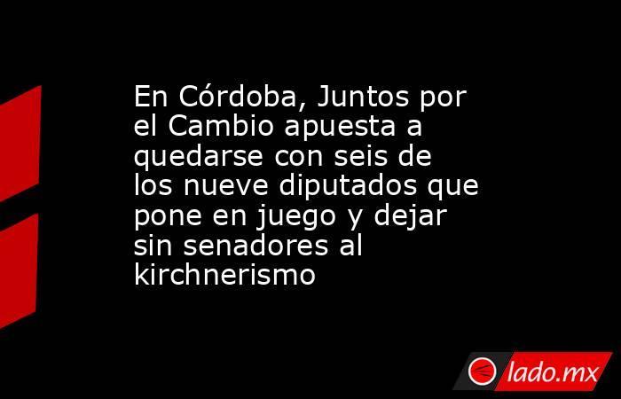 En Córdoba, Juntos por el Cambio apuesta a quedarse con seis de los nueve diputados que pone en juego y dejar sin senadores al kirchnerismo. Noticias en tiempo real