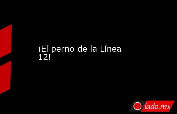 ¡El perno de la Línea 12!. Noticias en tiempo real