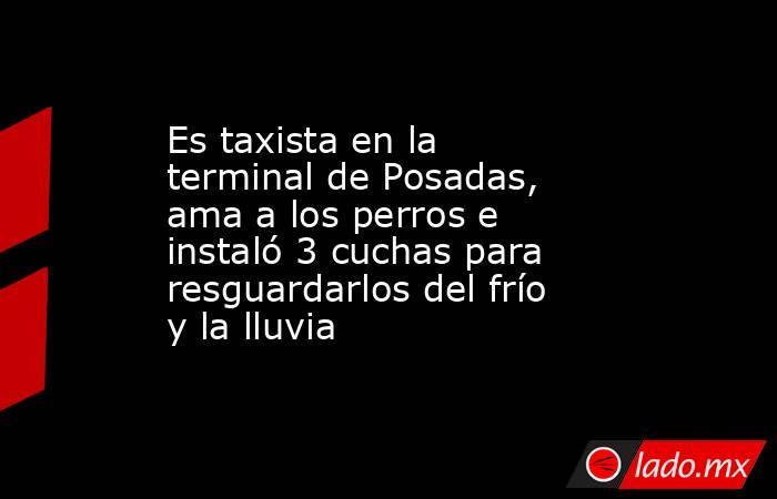 Es taxista en la terminal de Posadas, ama a los perros e instaló 3 cuchas para resguardarlos del frío y la lluvia. Noticias en tiempo real