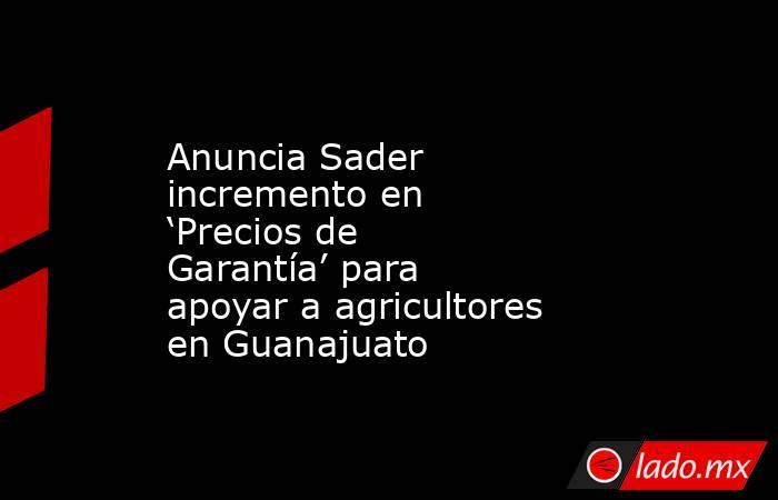 Anuncia Sader incremento en 'Precios de Garantía' para apoyar a agricultores en Guanajuato. Noticias en tiempo real