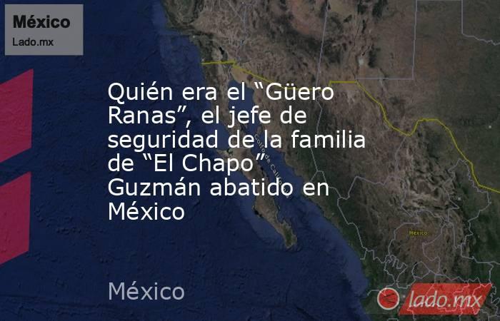 """Quién era el """"Güero Ranas"""", el jefe de seguridad de la familia de """"El Chapo"""" Guzmán abatido en México. Noticias en tiempo real"""